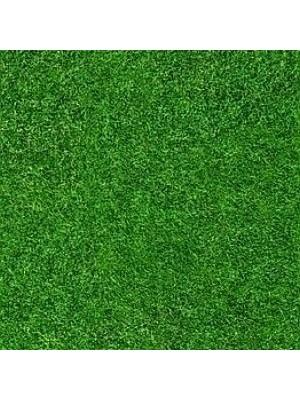 Forbo Flotex Teppichboden Vision Image Objekt-Boden Grass, Rollenbreite 2 m, Teppich-Bodenbelag günstig online kaufen von Teppich-Hersteller Forbo HstNr: i000369