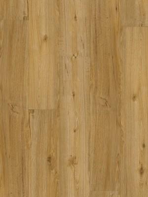 ter Hürne FRIENDS Klebe-Vinyl Eiche Conny 2 mm Landhausdiele Designboden zur Verklebung 1219,2 x 177,8 x 2 mm, NS: 0,3 mm, NK: 23/31 sofort günstig direkt kaufen, HstNr.: 1188210003, *** ACHUNG: Versand ab Mindestbestellmenge: 28 m² ***