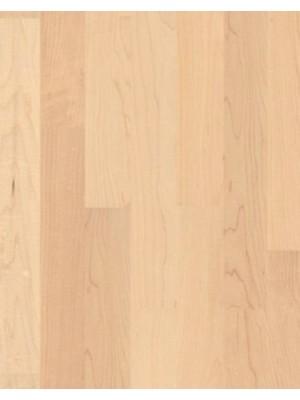Weitzer Parkett WP Charisma 3-Stab 3-Schicht Schiffsboden Fertigparkett, ProStrong lackiert Ahorn canadisch ruhig, Plankenmaß 2245 x 193 mm, 14 mm Stärke, 2,60 m² pro Paket, Nutzschicht 3,6 mm günstig Parkettboden online kaufen