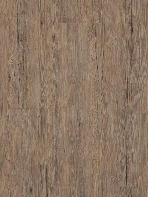 Adramaq Old Wood Vinyl Designboden Esche rustikal grau rustikales Holzdekor, synchrongeprägt