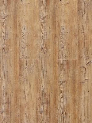 Wicanders Hydrocork Clic Vinyl-Designboden mit Korkdämmung Acardian Rya Pine Planke 1225 x 145 mm, 6 mm Stärke, 1,599 m² pro Paket, NS: 0,55 mm, Klick-Vinyl Bodenbelag jetzt noch günstiger mit persönlichem Angebot - jetzt zusammen mit Muster anfragen ab 20 m², HstNr: B5P5001 *** 1. Wahl Qualität! Lieferung ab € 600,- Warenwert ***