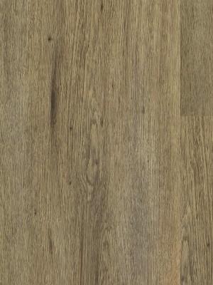 Wicanders Hydrocork Breitdiele Clic Vinyl-Designboden mit Korkdämmung Light Dawn Oak Planke 1225 x 195 mm, 6 mm Stärke, 1,672 m² pro Paket, NS: 0,55 mm, Klick-Vinyl Bodenbelag jetzt noch günstiger mit persönlichem Angebot - jetzt zusammen mit Muster anfragen ab 20 m², HstNr: B5WS001 *** 1. Wahl Qualität! Lieferung ab EUR 600,- Warenwert ***