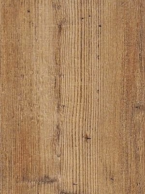 Cortex Vinatura Vinyl Parkett Designboden auf mit Klicksystem und integrierter Trittschalldämmung Corrido-Pinie Planke 1220 x 185 mm, 10,5 mm Stärke, 1,806 m² pro Paket, NS: 0,55 mm Preis günstig gesund Vinyl-Boden-Parkett von Bodenbelag-Hersteller Cortex HstNr: CVI01505