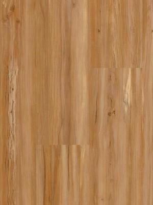 Wineo 400 Wood Designboden Vinyl 1-Stab Landhausdiele zur vollflächigen Verklebung Soul Apple Mellow Planke 1200 x 180 mm, 2 mm Stärke, 3,89 m² pro Paket, Nutzschicht 0,3 mm, Verlegung mit Verklebung oder Unterlage Silent-Premium, von Design-Belag Hersteller Wineo HstNr: DB00107