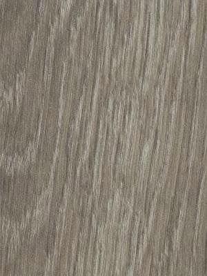 Forbo Allura Click 0.55 grey giant oak Designboden mit Klicksystem