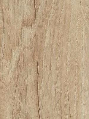 Forbo Allura Click 0.55 light honey oak Designboden mit Klicksystem