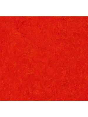 Forbo Marmoleum Click Linoleum-Parkett einfach mit Klicksystem selbst verlegen, Dekor scarlet, Maß: 300 x 300 mm, 9,8 mm Stärke, 0,63 m² pro Paket, preis-günstig Linoleumbelag kaufen von Naturboden-Hersteller Forbo HstNr: fmc333131 *** Lieferung ab 10m² ***
