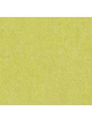 Forbo Marmoleum Click Linoleum-Parkett spring buds einfach selbst zu verlegen
