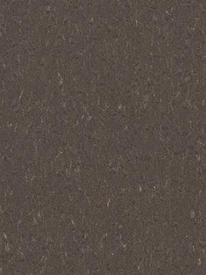 Forbo Linoleum Uni Marmoleum Piano sealion, Rollenbreite 2,0 m, Stärke 2,5 mm, Linoleumbelag im Fachhandel günstig online kaufen von Linoleumboden-Hersteller Forbo HstNr: 3632