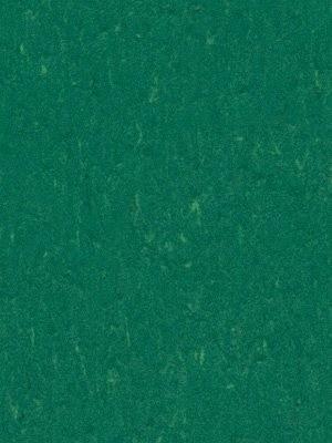 Forbo Linoleum Uni Marmoleum Piano greenwood, Rollenbreite 2,0 m, Stärke 2,5 mm, Linoleumbelag im Fachhandel günstig online kaufen von Linoleumboden-Hersteller Forbo HstNr: 3649
