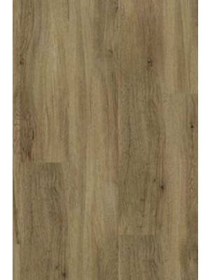 Gerflor Rigid 55 Lock Acoustic  Gerflor Rigid 55 Lock Acoustic Click Designboden mit integrierter Trittschalldämmung Puerto, Planke 177 x 1219 mm, 6 mm Stärke, 1,67 m² pro Paket, NS: 0,55 mm Vinyl-Design-Belag selbstliegend Preis günstig online kaufen und selbst verlegen von Rigid-Core-Design-Belag-Hersteller Gerflor HstNr: gr0001  günstig online kaufen, HstNr.: gr0001 *** Lieferung Gerflor Bodenbelag ab 15 m² ***