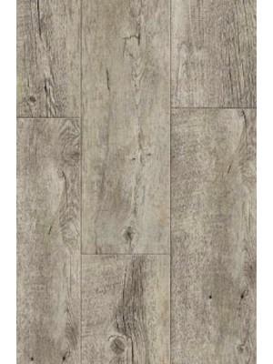 Gerflor Rigid 55 Lock Acoustic  Gerflor Rigid 55 Lock Acoustic Click Designboden mit integrierter Trittschalldämmung Lovina, Planke 177 x 1219 mm, 6 mm Stärke, 1,67 m² pro Paket, NS: 0,55 mm Vinyl-Design-Belag selbstliegend Preis günstig online kaufen und selbst verlegen von Rigid-Core-Design-Belag-Hersteller Gerflor HstNr: gr0008  günstig online kaufen, HstNr.: gr0008 *** Lieferung Gerflor Bodenbelag ab 15 m² ***