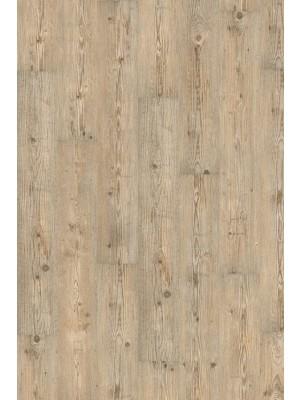 Wineo 1000 Purline Bioboden Click Ascona Pine Nature Wood Planken mit Klicksystem