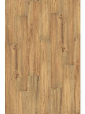 Wineo 1000 Purline Bioboden Click Wood Planken mit Klicksystem Canyon Oak Planke 1295 x 195 mm, 5 mm Stärke, 2,02 m² pro Paket Preis günstig Bio-Designboden kaufen von Design-Belag Hersteller Wineo HstNr: PLC007R *** Bio-Designboden Lieferung ab 12 m² ***
