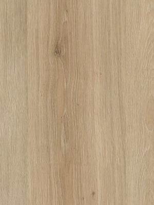 Wineo 1000 Purline Bioboden Click Multi-Layer XXL Island Oak Sand Wood Planken mit Klicksystem