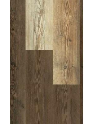 Wineo 1500 Wood L Purline PUR Bioboden Golden Pine Mixed Planke 1200 x 200 mm, 2,5 mm Stärke, 4,8 m² pro Paket, Verlegung mit Verklebung oder Unterlage SilentPremium, günstig online kaufen von Design-Belag Hersteller Wineo HstNr: PL077C sofort günstig direkt kaufen, HstNr.: PL077C, *** ACHUNG: Versand ab Mindestbestellmenge: 14 m² ***