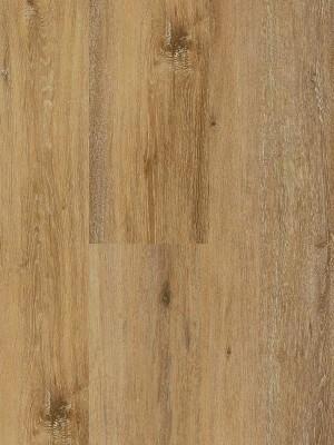 Wineo 400 Wood XL Designboden Vinyl Liberation Oak Timeless