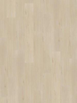 Wineo 500 medium V4 Laminat wild oak white Laminatboden einzigartige Echtholzanmutung dank 4V-Fuge Eiche Landhausdiele 8 x 1290 x 195 mm, NK 23/33, im Paket 2,26 m² sofort günstig direkt kaufen, HstNr.: LA184MV4, *** ACHUNG: Versand ab Mindestbestellmenge: 43 m² ***