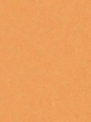 Wineo Purline Eco Bioboden Rolle Levante Terracotta Light Rollenbreite 2 m, 2,5 mm Stärke, zur schwimmenden Verlegung oder Verklebung, *** 8 lfdm (16m²) Mindestbestellmenge, günstig Bio-Designboden online kaufen von Design-Belag Hersteller Wineo HstNr: PB00008LE