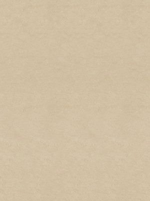 Forbo Marmoleum Linoleum Arabian pearl Fresco Naturboden
