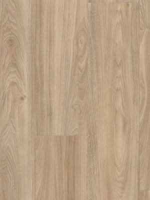 Wineo 400 Wood Click Multi-Layer Designboden mit Klick-System Compassion Oak Tender Planke 1222 x 182 mm, 9 mm Stärke, 2 m² pro Paket, Nutzschicht 0,3 mm Designboden sofort günstig direkt kaufen *** ACHUNG: Versand ab Mindestbestellmenge 12m² *** von Design-Belag Hersteller Wineo HstNr: MLD00109