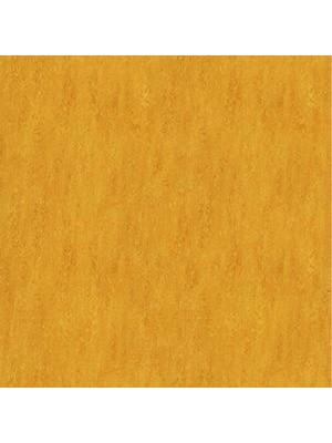 Forbo Marmoleum Linoleum golden sunset Real Naturboden