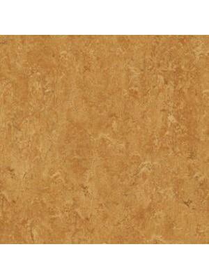 Forbo Marmoleum Linoleum Real Naturboden sahara Stärke 2,5 mm, Rollenbreite 2 m, Linoleumbelag --- Mindestbestellmenge 6 m² !!!  --- günstig online kaufen von Naturboden-Hersteller Forbo HstNr: mr3174