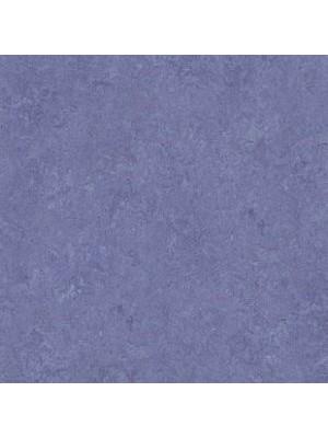 Forbo Marmoleum Linoleum Real Naturboden hyacinth Stärke 2,5 mm, Rollenbreite 2 m, Linoleumbelag --- Mindestbestellmenge 6 m² !!!  --- günstig online kaufen von Naturboden-Hersteller Forbo HstNr: mr3221