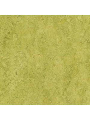 Forbo Marmoleum Linoleum Real Naturboden chartreuse Stärke 2,5 mm, Rollenbreite 2 m, Linoleumbelag --- Mindestbestellmenge 6 m² !!!  --- günstig online kaufen von Naturboden-Hersteller Forbo HstNr: mr3224