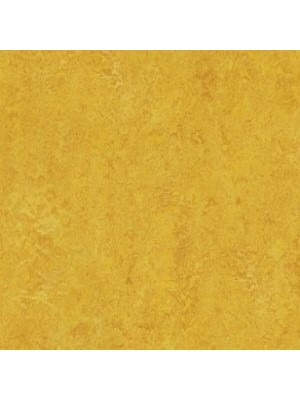 Forbo Marmoleum Linoleum Real Naturboden dandelion Stärke 2,5 mm, Rollenbreite 2 m, Linoleumbelag --- Mindestbestellmenge 6 m² !!!  --- günstig online kaufen von Naturboden-Hersteller Forbo HstNr: mr3225