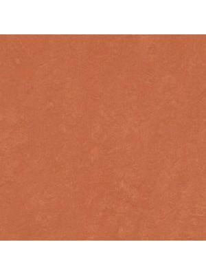 Forbo Marmoleum Linoleum Real Naturboden stucco rosso Stärke 2,5 mm, Rollenbreite 2 m, Linoleumbelag --- Mindestbestellmenge 6 m² !!!  --- günstig online kaufen von Naturboden-Hersteller Forbo HstNr: mr3243