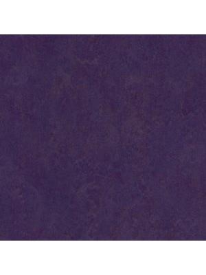 Forbo Marmoleum Linoleum Real Naturboden purple Stärke 2,5 mm, Rollenbreite 2 m, Linoleumbelag --- Mindestbestellmenge 6 m² !!!  --- günstig online kaufen von Naturboden-Hersteller Forbo HstNr: mr3244