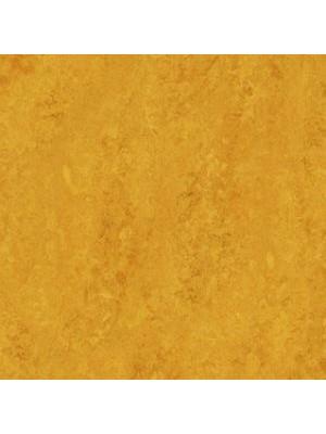 Forbo Marmoleum Linoleum lemon zest Real Naturboden