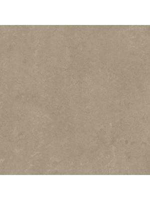 Forbo Marmoleum Linoleum Real Naturboden sparrow Stärke 2,5 mm, Rollenbreite 2 m, Linoleumbelag --- Mindestbestellmenge 6 m² !!!  --- günstig online kaufen von Naturboden-Hersteller Forbo HstNr: mr3252