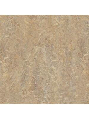 Forbo Marmoleum Linoleum Vivace Naturboden donkey island Stärke 2,5 mm, Rollenbreite 2 m, Linoleumbelag --- Mindestbestellmenge 6 m² !!!  --- günstig online kaufen von Naturboden-Hersteller Forbo HstNr: mv3407