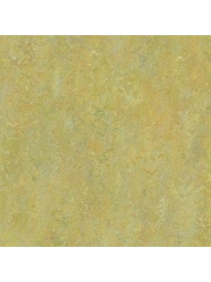 Forbo Marmoleum Linoleum Vivace Naturboden green melody Stärke 2,5 mm, Rollenbreite 2 m, Linoleumbelag --- Mindestbestellmenge 6 m² !!!  --- günstig online kaufen von Naturboden-Hersteller Forbo HstNr: mv3413