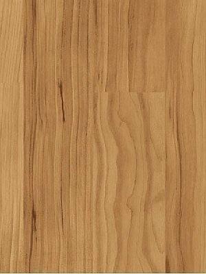 Parador Basic 400 Laminat hochwertig, 2-Stab Apfel Bernstein Planke 1285 x 194 mm, 8 mm Stärke, 2,49 m² pro Paket, günstig Laminatboden online von Laminatboden-Hersteller Parador HstNr: 1426505 *** Lieferung ab 15 m² bzw. 350 EUR Warenwert***