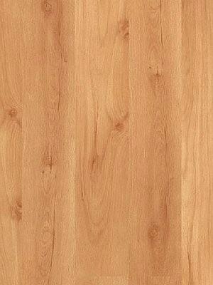 Parador Basic 200 Laminat hochwertig, 2-Stab Buche Planke 1285 x 194 mm, 7 mm Stärke, 2,99 m² pro Paket, günstig Laminatboden online von Laminatboden-Hersteller Parador HstNr: P1440984