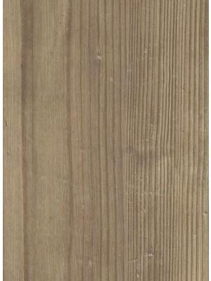 Amtico Click Smart Designboden mit Klicksystem Dry Cedar Planke 178,1 x 1244,6 mm, 6 mm Stärke, 1,77 m² pro Paket, NS: 0,55 mm, Klick-Vinyl Preis günstig online kaufen für einfachste Verlegung von Bodenbelag-Hersteller Amtico HstNr: SB5W2535